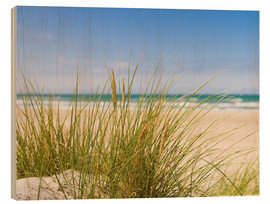 Wood print  Beach with dune grass in sand