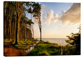 Canvas print  Baltic Sea near Rostock