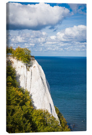 Canvas  Chalk cliffs in the Jasmund National Park on Rügen