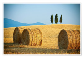 Premium poster Tuscany landscape with straw bales