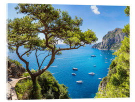 Acrylic print  A beautiful summer on Capri