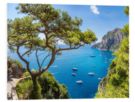 Foam board print  A beautiful summer on Capri