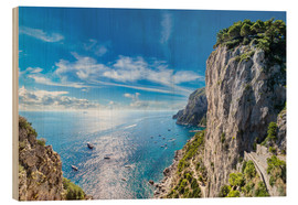 Wood print  Cliff on Capri island
