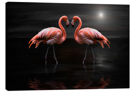 Canvas print  Flamingos at night - Heike Langenkamp