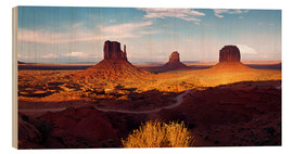 Wood print  Monument Valley light - Michael Rucker