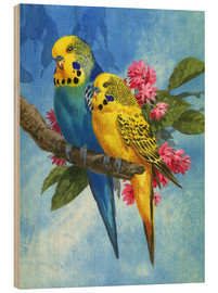 Wood print  Budgies on Blue Background - John Francis