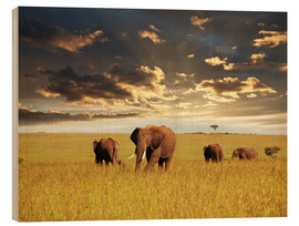 Wood print  Elephants in Africa