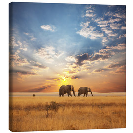 Canvas print  Elephants on tour
