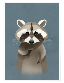 Poster Racoon