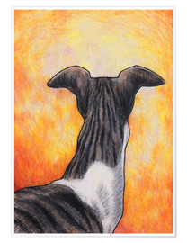 Premium poster Greyhound drawing