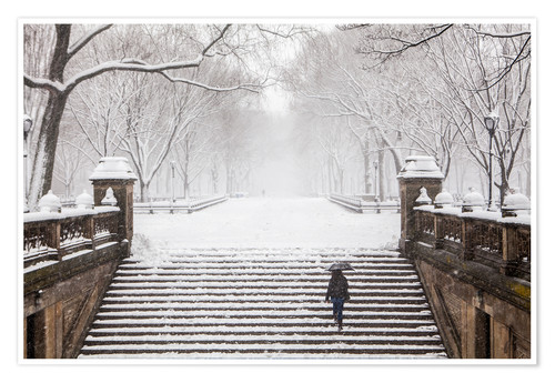 Poster Winter in Central Park