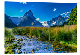 Acrylic print  Milford Sound New Zealand - Thomas Hagenau