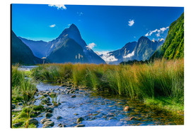 Thomas Hagenau - Milford Sound New Zealand