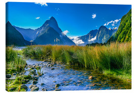 Canvas print  Milford Sound New Zealand - Thomas Hagenau