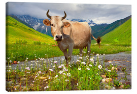 Canvas print  Cattle on a mountain pasture