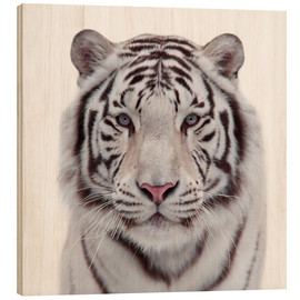 Wood  The white tiger