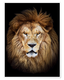 Premium poster King of the Jungle Portrait