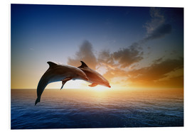 Foam board print  Dolphins in the sunset