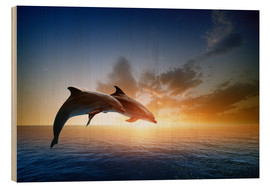 Wood print  Dolphins in the sunset