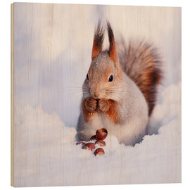 Wood print  Squirrel in the snow