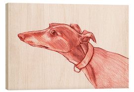 Wood print  Greyhound pencil drawing white and red colour pencil sketch - Jim Griffiths