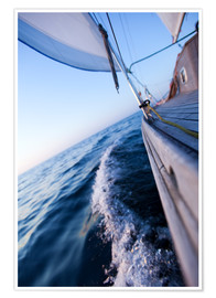 Premium poster Sailing in summer