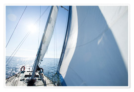Poster  The sailing trip