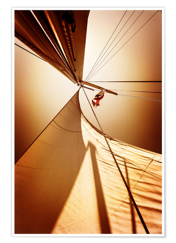 Premium poster Sail in the wind I
