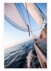 Premium poster  Sailing in Sunrise