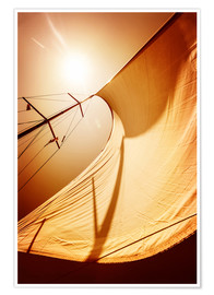 Premium poster Sail in the wind II