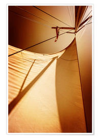 Poster  Sails in sunset light