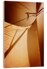 Wood  Sails in sunset light