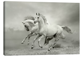 Canvas print  Horses in Summer