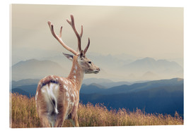 Acrylic print  Deer standing on the mountain