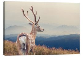 Canvas print  Deer standing on the mountain