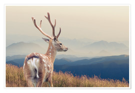 Poster  Deer standing on the mountain