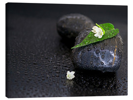 Canvas print  Black stones with leaf