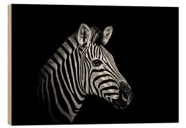 Wood  Zebra - close up