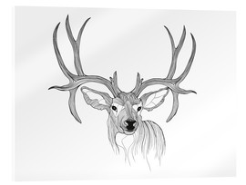 Acrylic print  Stag