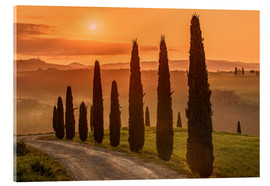 Acrylic glass  Golden Morning - Tuscany - Achim Thomae