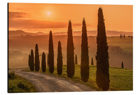 Aluminium print  Golden Morning - Tuscany - Achim Thomae