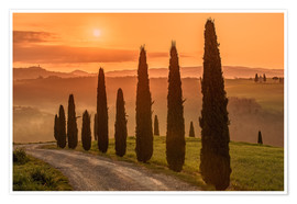Poster  Golden Morning - Tuscany - Achim Thomae