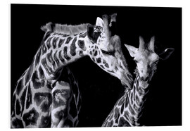 Foam board print  Mother and child giraffe - Sabine Wagner
