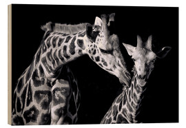 Sabine Wagner - Mother and child giraffe