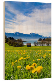 Wood  Bavarian Landscape with Mountains - Michael Helmer