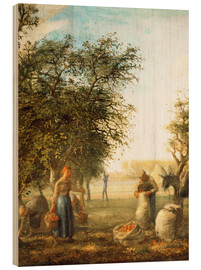 Wood print  Apple harvest - Jean-François Millet