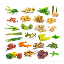 Premium poster  Vegetable and herb collection