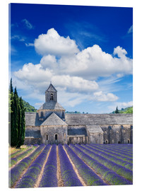 Acrylic print  Sénanque abbey with lavender field, Provence, France
