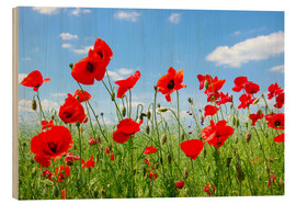 Wood print  Red poppies in green field