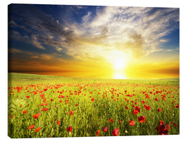 Canvas  Field with green grass and red poppies